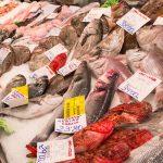 frischer Fisch Mallorca